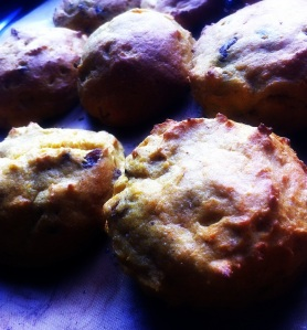 Carrot Cake scones just baked2-001