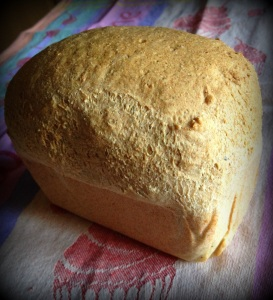 Gluten free best bread ever (6)-001